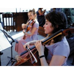 String leaves (ヴァイオリン、チェロ)