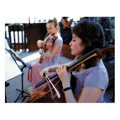 String leaves (violin, cello)