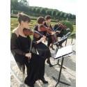 I HAVE A LOVE (cuerda cuarteto)