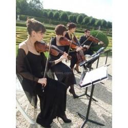 PETITE FLEUR (quatuor à cordes)