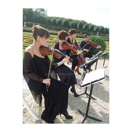 THE SUMMER KNOWS ( summer of 42) - string quatuor