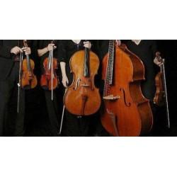 DES PAS SUR LA NEIGE (strings)