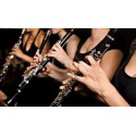 HARLEM NOCTURNE (Clarinettes mp3)